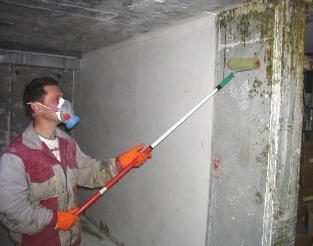 Грунтовка антифунгицидная